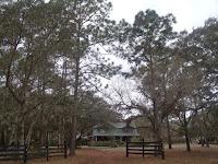 Casas en la CR 419