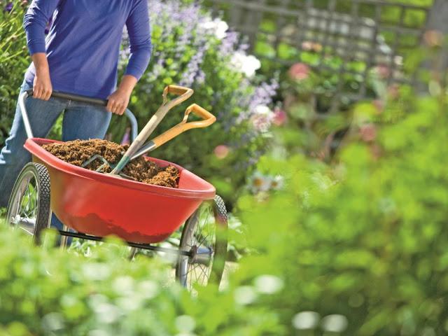 Garden%2Bbarrow%2Band%2Bshovel.jpeg