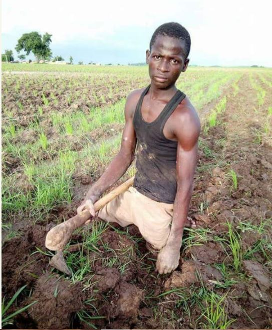 So Touching: Crippled Man Working on His Rice Farm [See Photos]