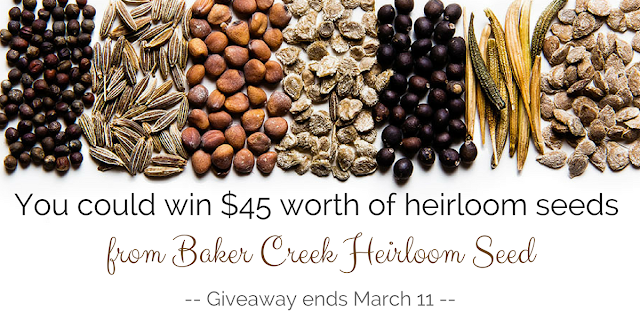 You could win seeds from Baker Creek Heirloom Seeds in this giveaway that ends 3/11/18
