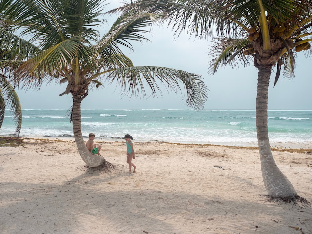 Niños en una playa de arena blanca con palmeras