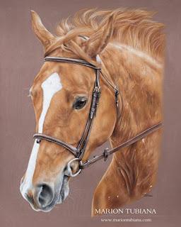 el-color-del-pastel-en-los-caballos-de-Marion-Tubiana caballos-dibujos-pastel