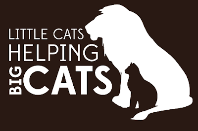 Little Cats helping Big Cats Treats help Big Cat Rescue