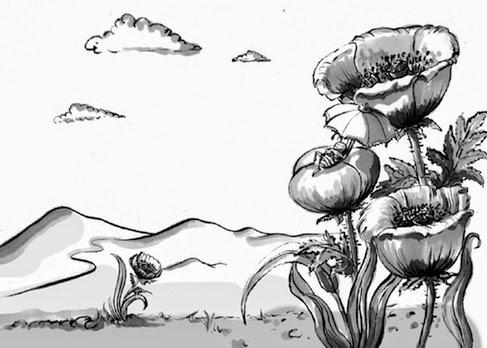 Kinderbuchillustration, Mohnblumen,