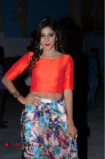 Actress Sushma Raj Pictures at Eedu Gold Ehe Gummadikaya Function 0088