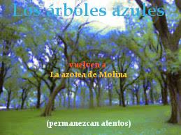 El relato Los árrboles azules en el blog La azotea de Molina