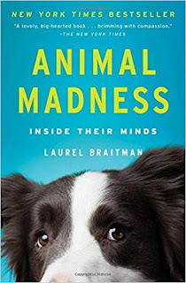 Cover of Animal Madness by Laurel Braitman, this month's book