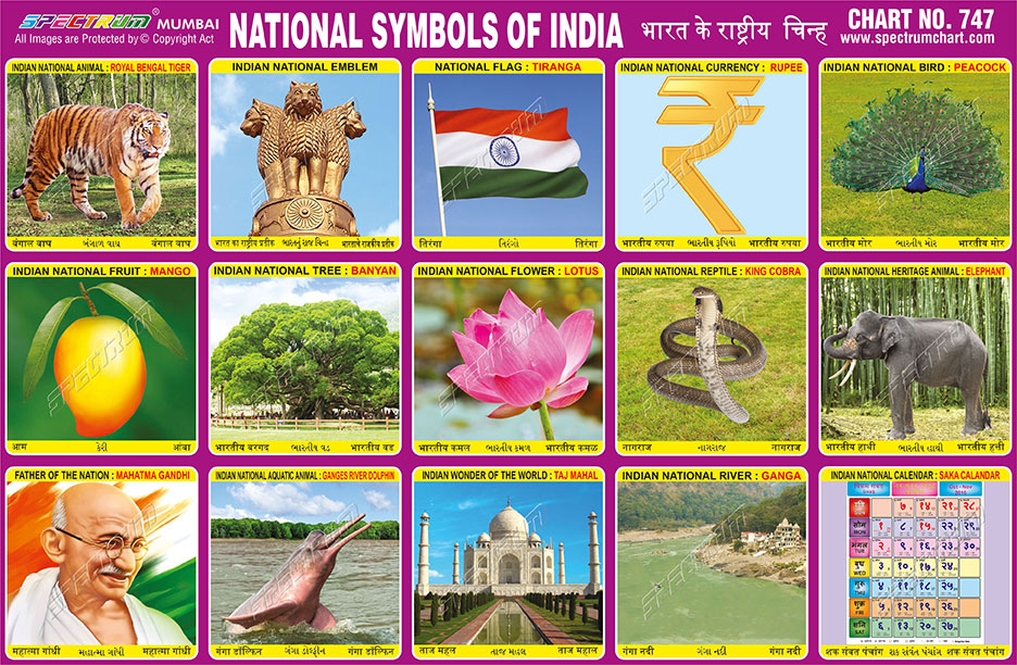 Indian National Symbols Choice Image Meaning Of This Symbol