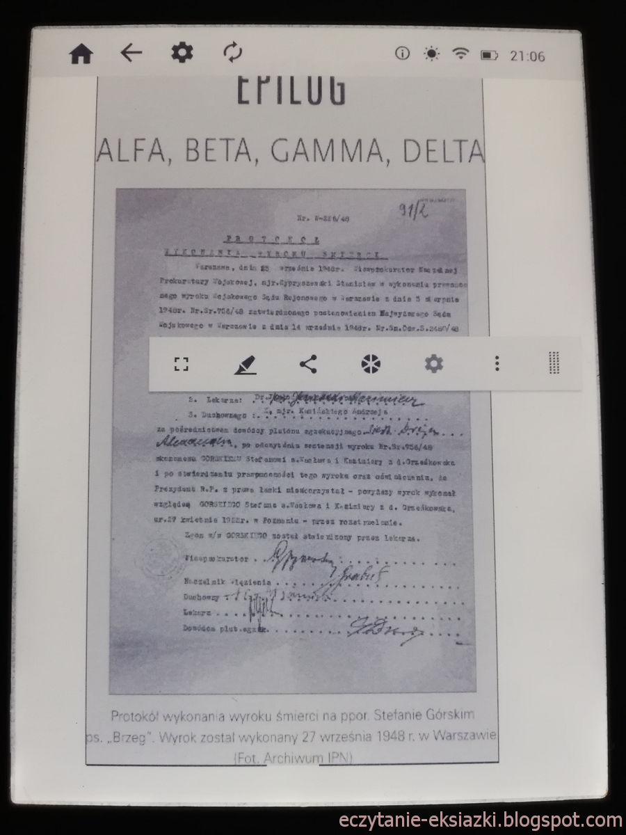 PocketBook Reader InkBOOK LUMOS – zdjęcie w e-booku przed powiększeniem
