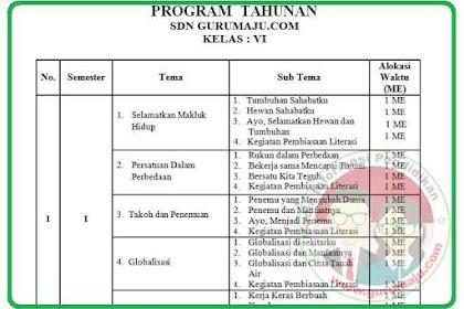 PROTA Kelas 6 Kurikulum 2013 Revisi 2018