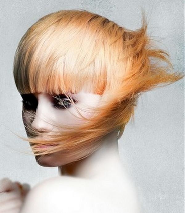 Amazing Snapshot Amazing Hairstyles For Girls