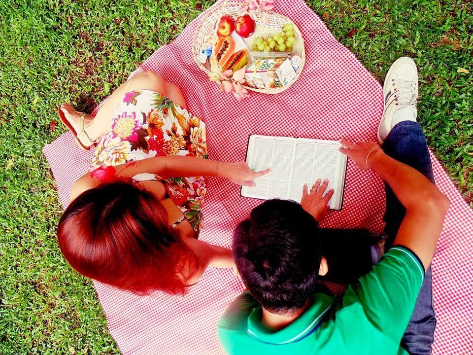 ensaio fotografico picnic