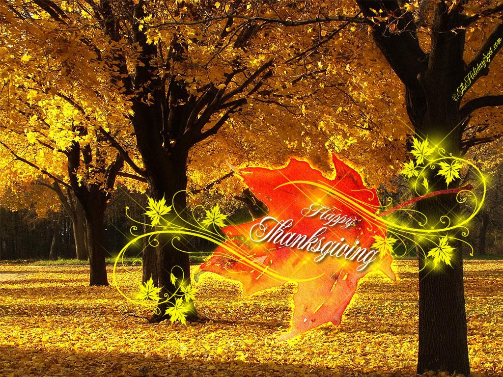 Trish, Alex, and Sage: Happy Thanksgiving!