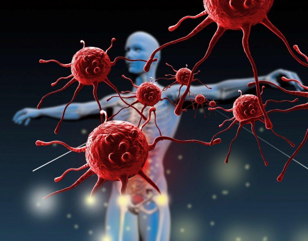 fasting, immune system