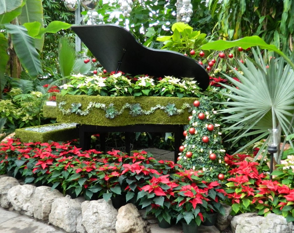 Allan Gardens Conservatory Christmas Flower Show 2013 piano by garden muses: a Toronto gardening blog