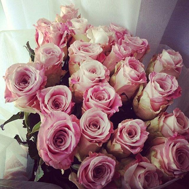 كُن مُزهِراً غابَ الزهرُ بينَ 10865059_10877493312