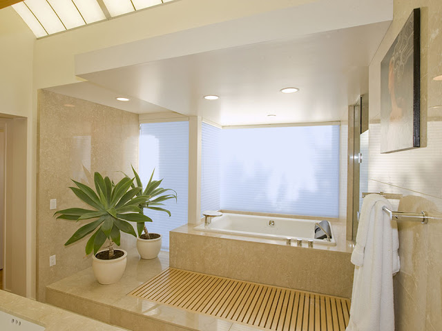 Picture of modern bathtub and wooden pedestal with vegetation