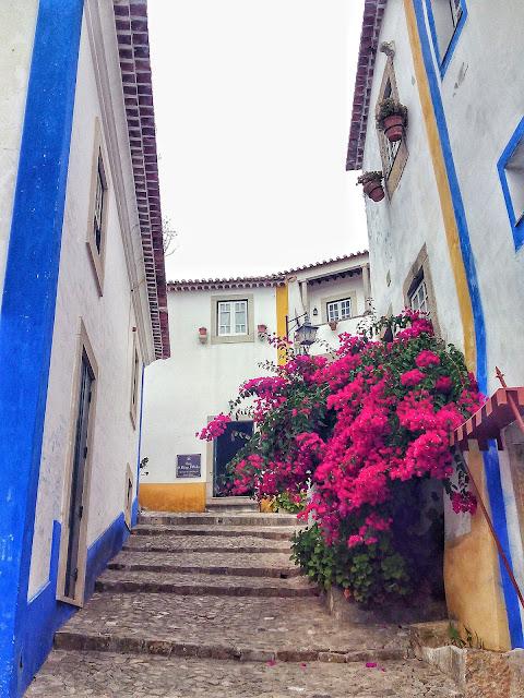 Calle Rua Buganvilla Obidos Portugal