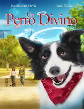 Un perro divino (2011)