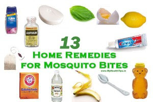Home Remedies For Mosquito Bites - I Paleo Diet