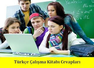 3. Sınıf Türkçe Meb Yayınları Çalışma Kitabı Cevapları