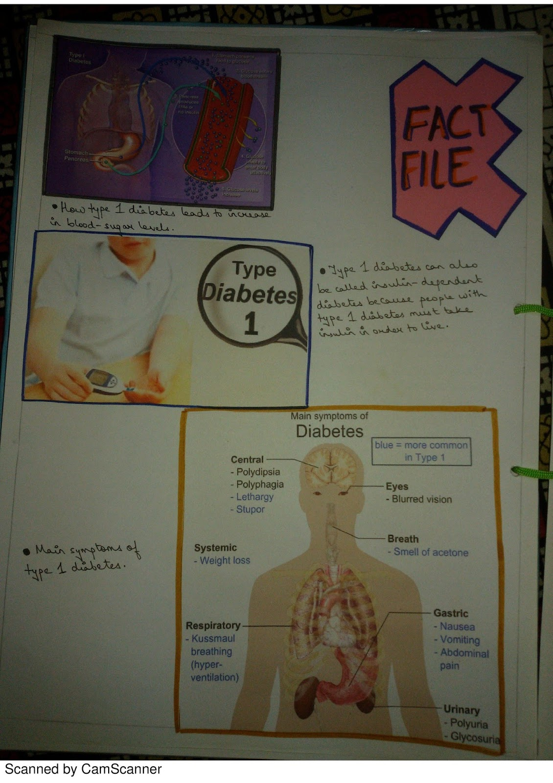 Biology projects for class 12 pdf