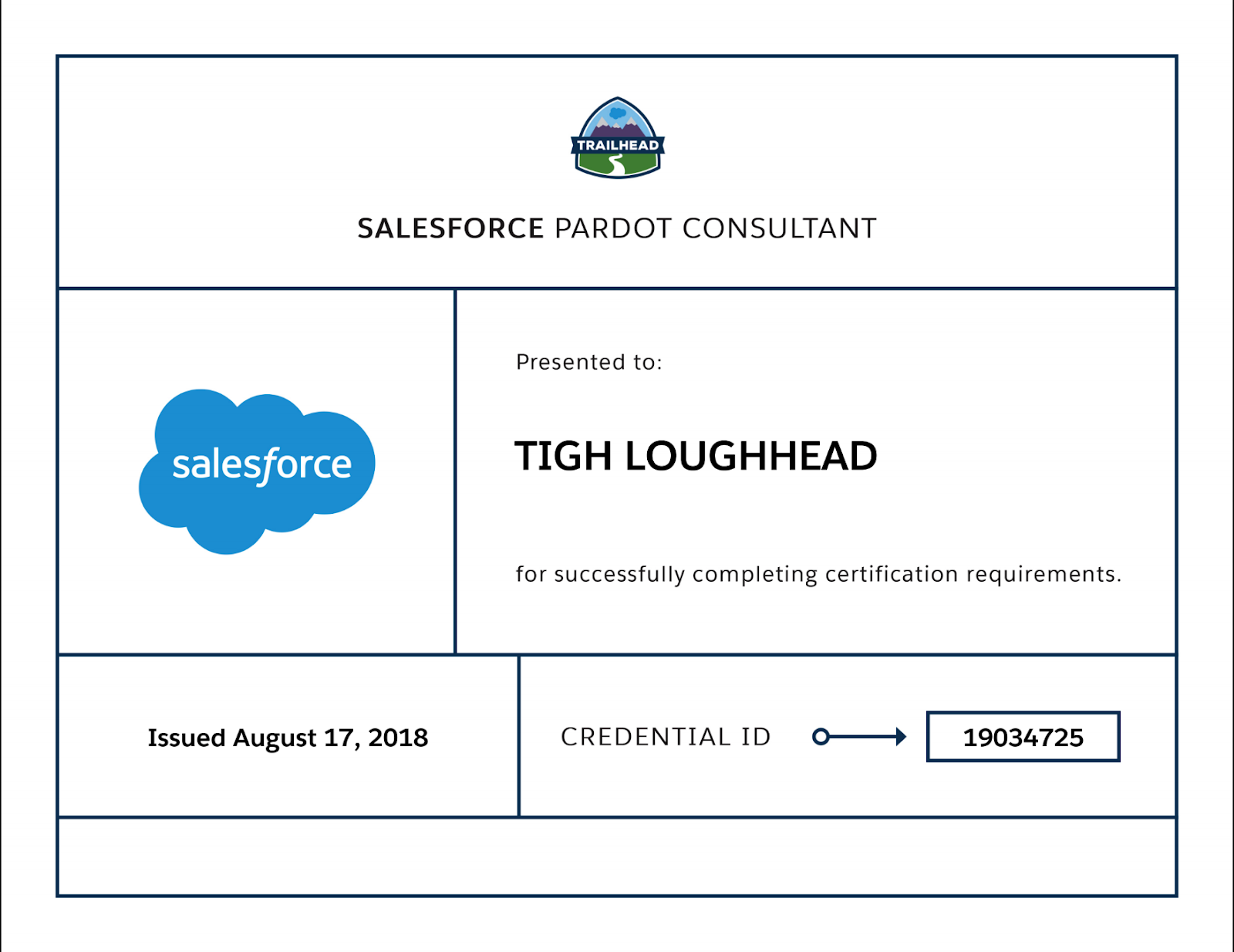 Tigh Loughhead is a Certified Salesforce Pardot Consultant