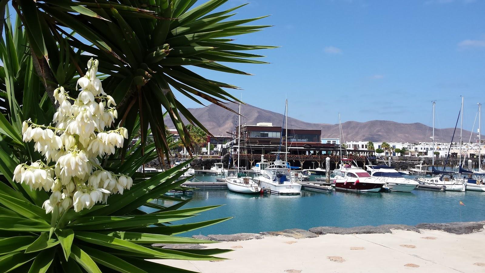Marina Rubicon, Lanzarote, Wyspy Kanaryjskie, co zobaczyć na Lanzarote, wiadomości o Hiszpanii