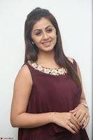 Nikki Galrani in a Brown Shining Sleeveless Gown at Nakshatram music launch ~  Exclusive 093.JPG