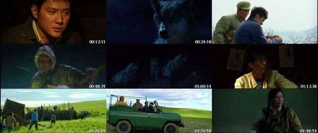 El Camino del Lobo DVDRip Latino