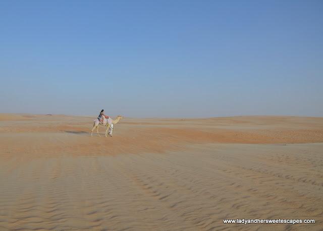 camel trekking in Tilal Liwa Hotel
