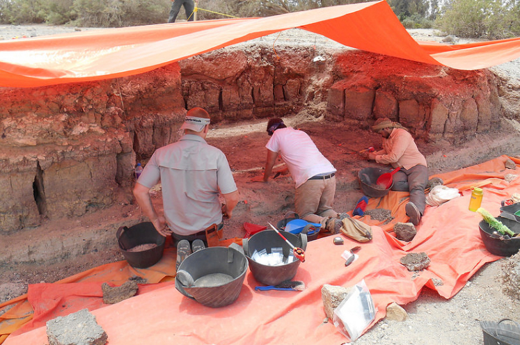 Archaeology Team Makes World First Tool Discovery The