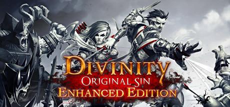Divinity Original Sin Enhanced Edition-RELOADED