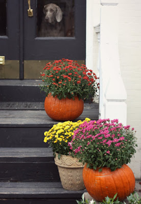 Dress Your Home in the Fall Spirit