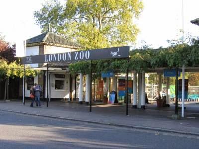 kebun binatang tertua