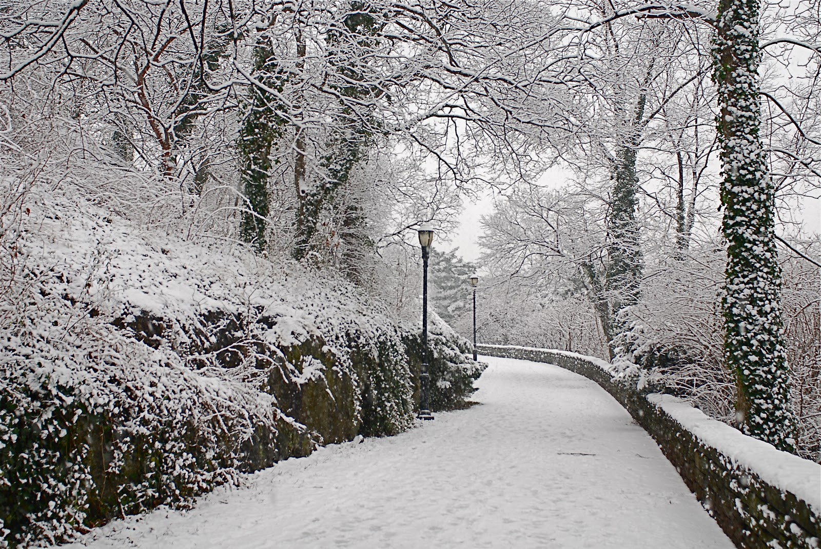 NYC ♥ NYC: Winter Scenes in Fort Tryon Park