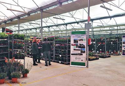 Exposición de plantas en Barnaplant  y Arribas Center jornadas febrero 2016