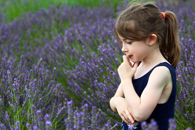 thinking in the lavender