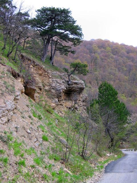 Скалы возле дороги Бахчисарай-Ялта