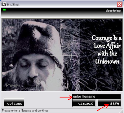 Capture Screenshot with Mr.Shot - Enter filename and click save