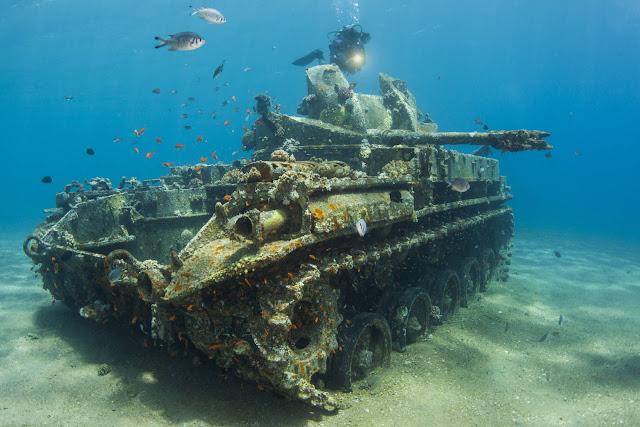 Tanque M42 en el mar Rojo en la costa jordana