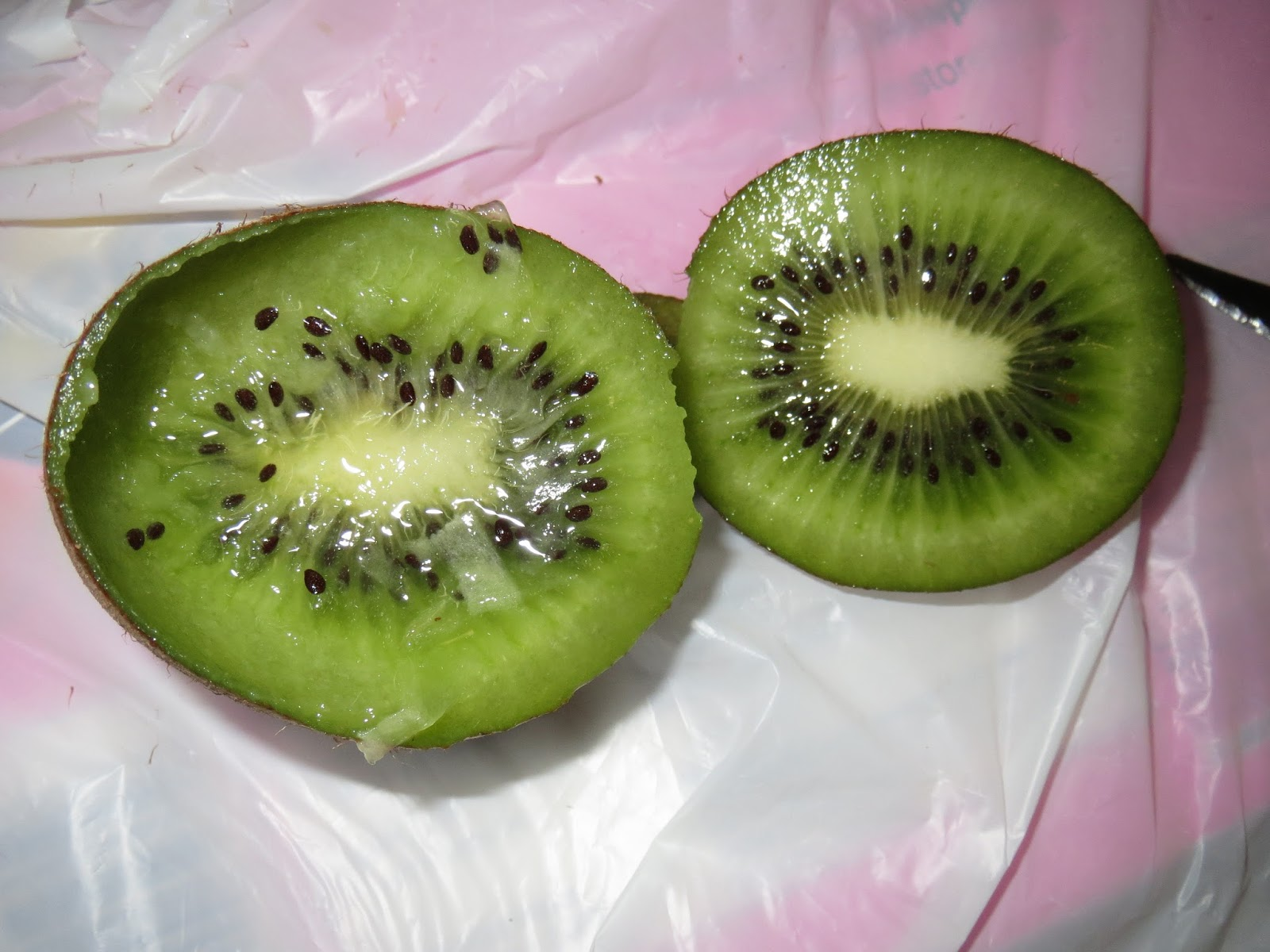 Mighties Kiwis Are Fucking Terrifying ~ THE INTERNET IS IN ...