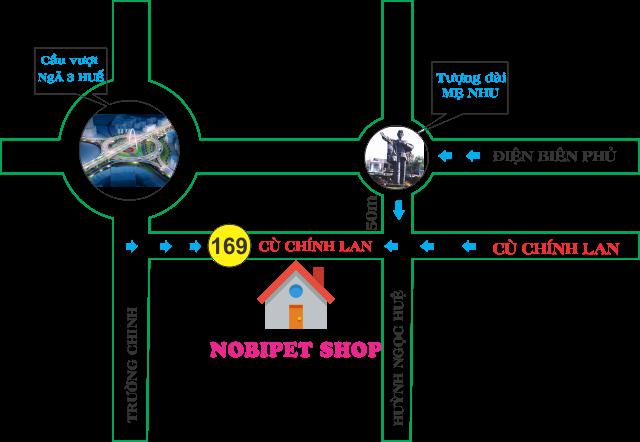 shop-hamster-nobipet-ban-chuot-canh-o-da-nang-3
