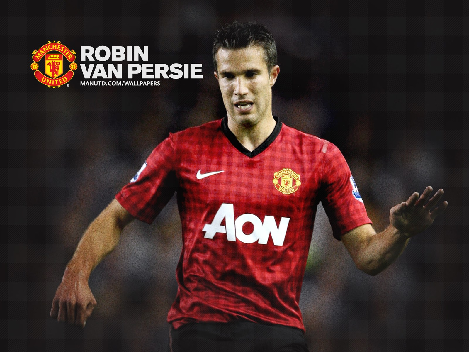 Profil Robin Van Persie