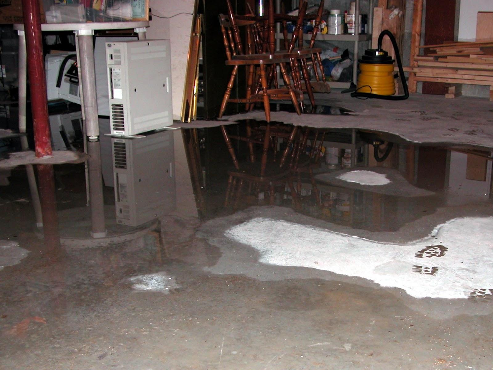 basement water 410 my basement flooded 1786 x 1339 1