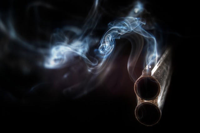 pistola-fumante-alluminio-nel-tessuto-cerebrale-degli-autistici