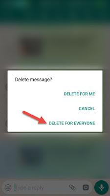 Delete Send Message In Whatsapp