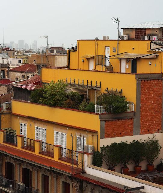 casa-perdrera,casa-mila,barcelone,vue,terrasse,gaudi,ouvre,visite,visite-guidee
