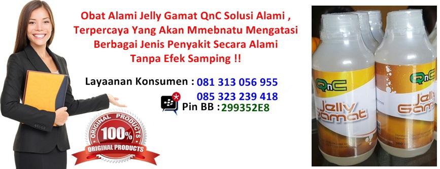 Tempat Jelly Gamat QnC