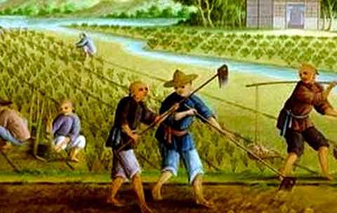 Revolusi pertanian